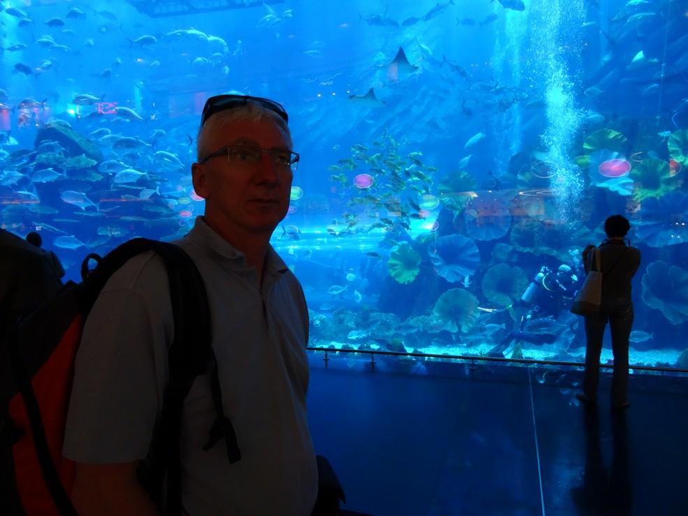 dsc00154-aquariumjpg