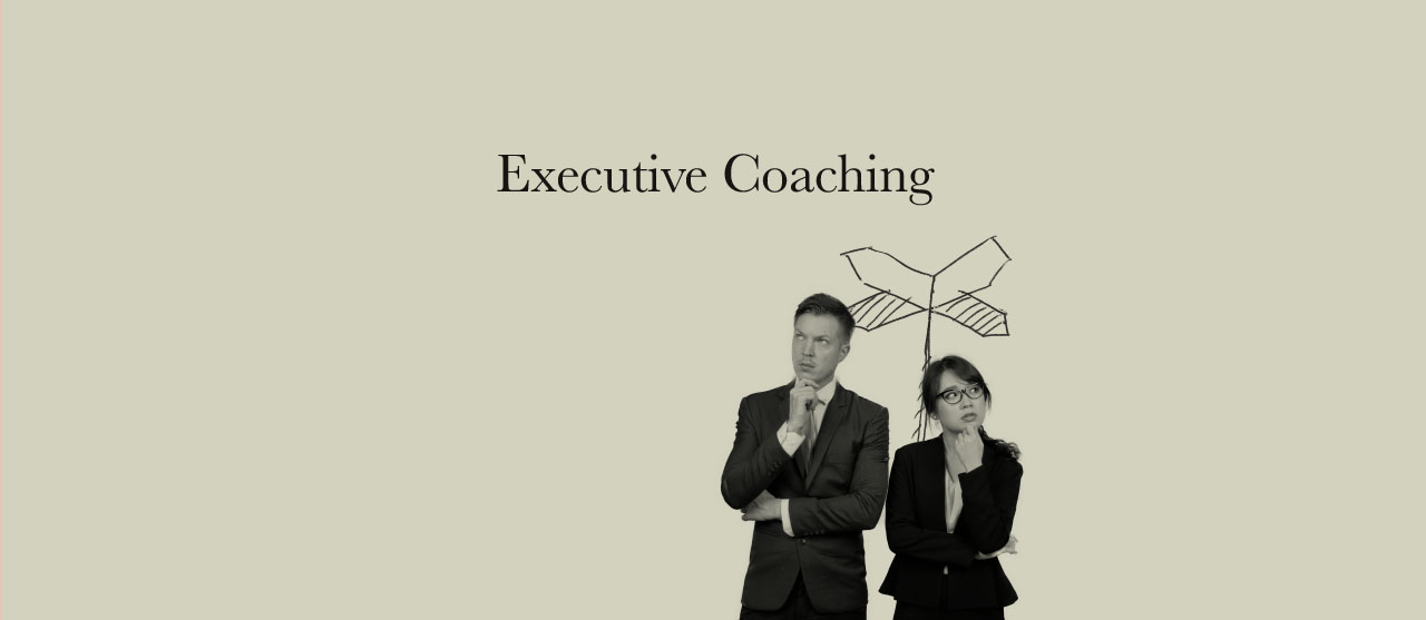 Executive Coaching - Reersted Empowering Potential