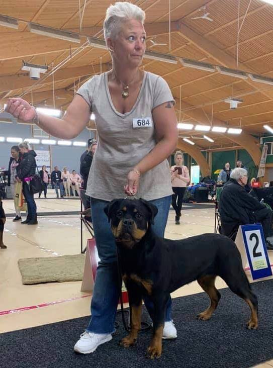 Malmö International Dog Show 30-31/3-2019