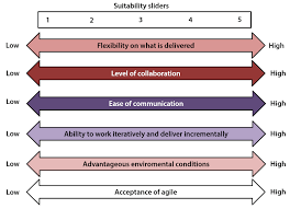 Agile and the Project Environment