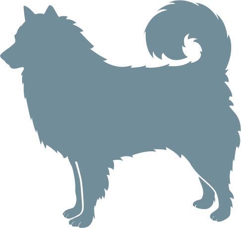 stenalderhundjpg